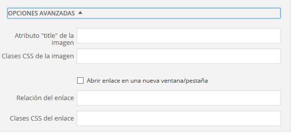 wordpress-ultimos-cambios-editar-opciones-avanzadas